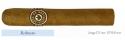 Zigarre Joya de Nicaragua Classico Robusto