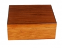 Savoy by Ashton Humidor Zebra Wood medium
